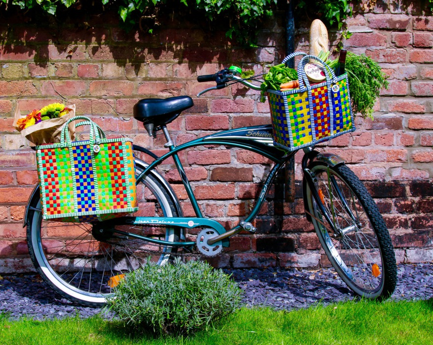 Mowgs bike and pannier baskets