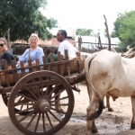 Michal on ox and cart transport to main roads
