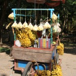 Banana stall selling local produce in Myanmar market